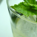 All-Year-Round Mojito
