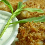 Creole Panko Crusted Tilapia Sticks